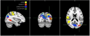 The brain regions with high classifier performance for each part of speech.